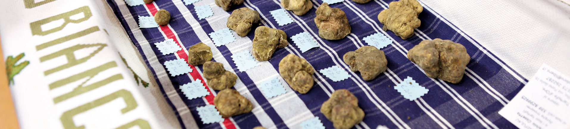 Alba International White Truffle Fair